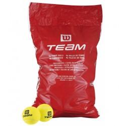 Wilson Team 96 lı Tenis Topu