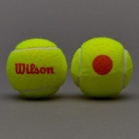 Wilson 12 li Başlangıç Tenis Topu WRT137200